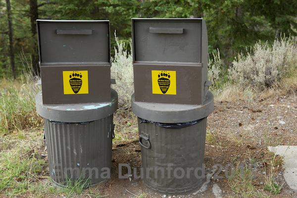 Bear proof bins