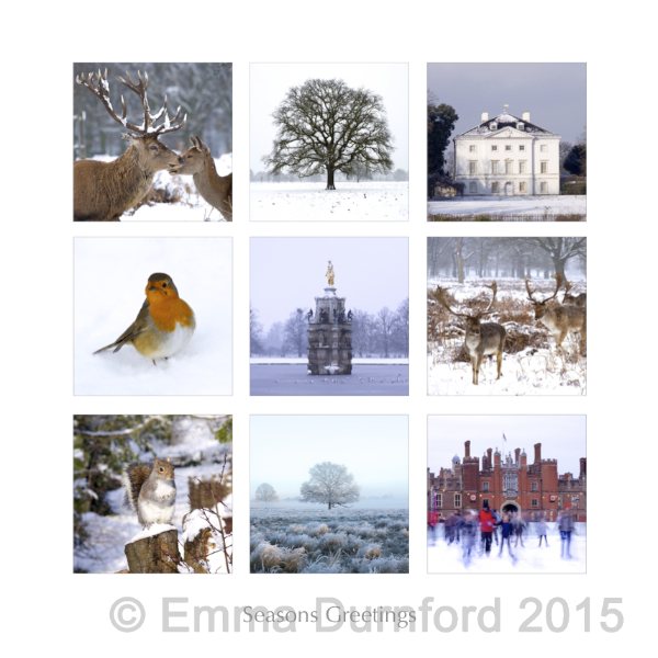 A Winter montage