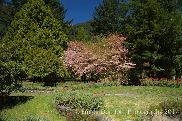 Gardens of Hotel Peulla