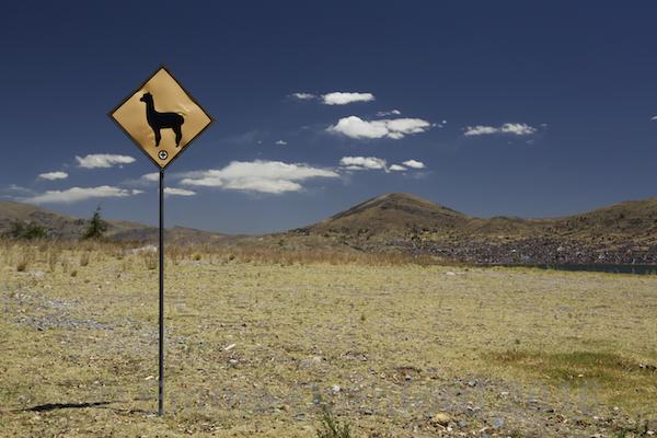Llama Sign