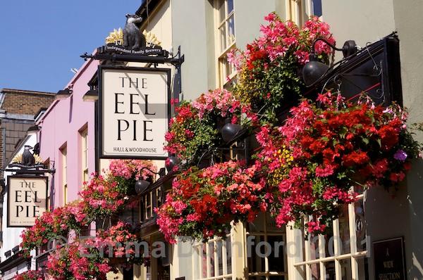 The 'Eel Pie'