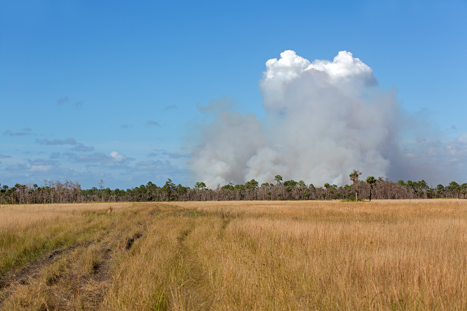 A distant wildfire. Canon 50D, Canon EF 70-200mm f/2.8L IS II USM, 1/800, f/6.3, iso 100, handheld.