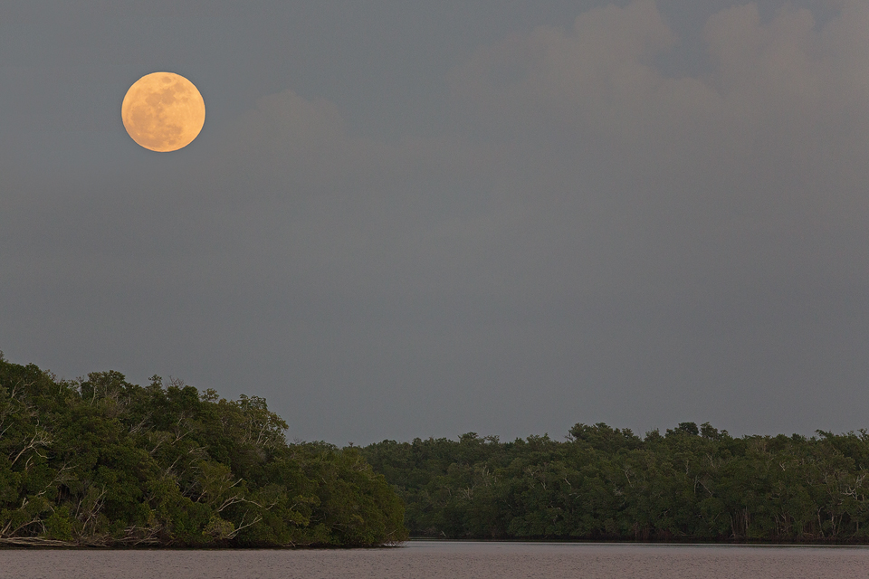 Sunset over Everglades National Park. Canon 5D Mark III, Canon EF 400mm f/5.6 L USM, 1/640, f/5.6, iso 2000, handheld.