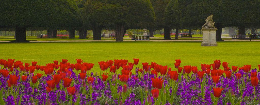 The Great Fountain Garden,Hampton Court Palace ,Surrey,England