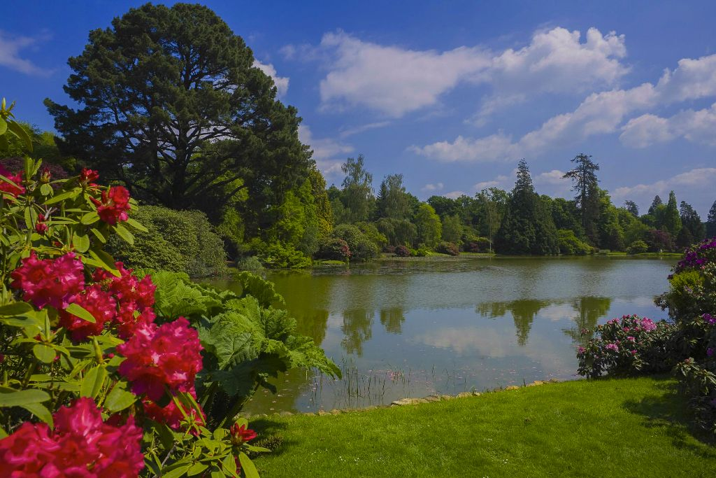 Sheffield Park Gardens NT Uckfield, East Sussex