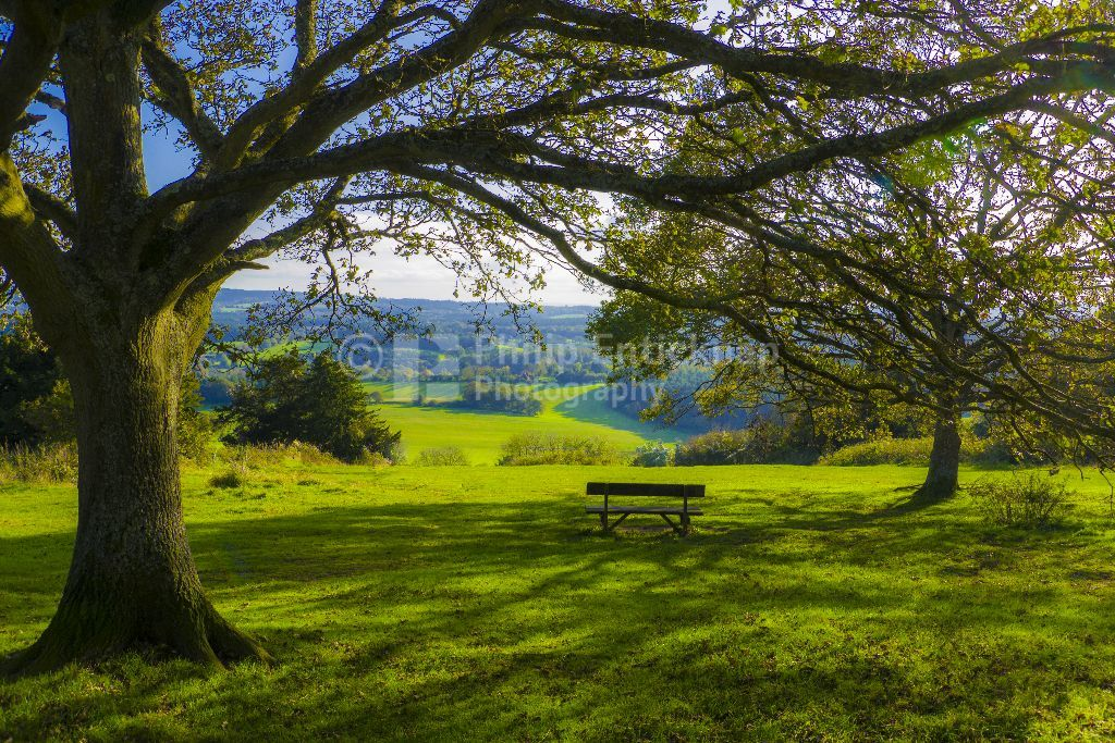 Newlands Corner ,Surrey,England.