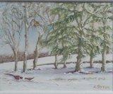 Winter in Little Cornard