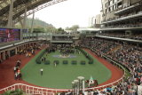 The Paradering at Sha Tin