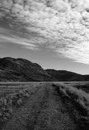 The bog road, Healy Pass