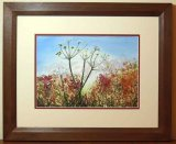 Shades Of Autumn - Print, Mounted and Framed
