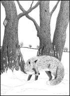 Margaret's Fox