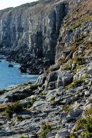 Swanage Cliffs