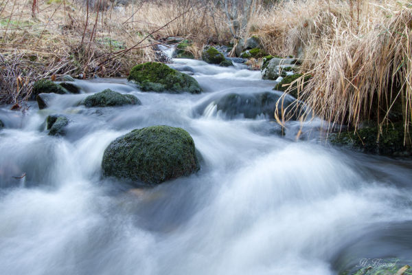 Den grøne steinen