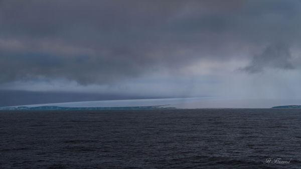 Kvitøya mot østsida