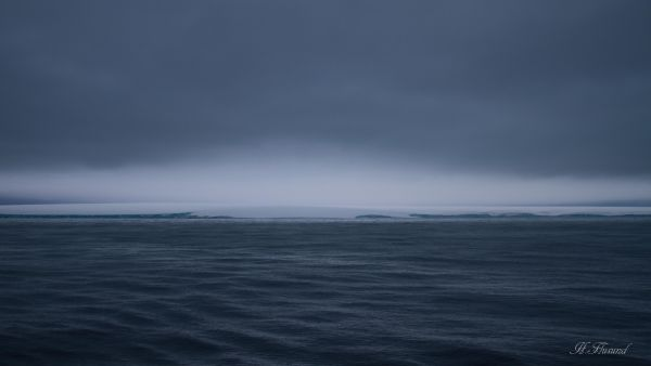 Kvitøya fra nordsida