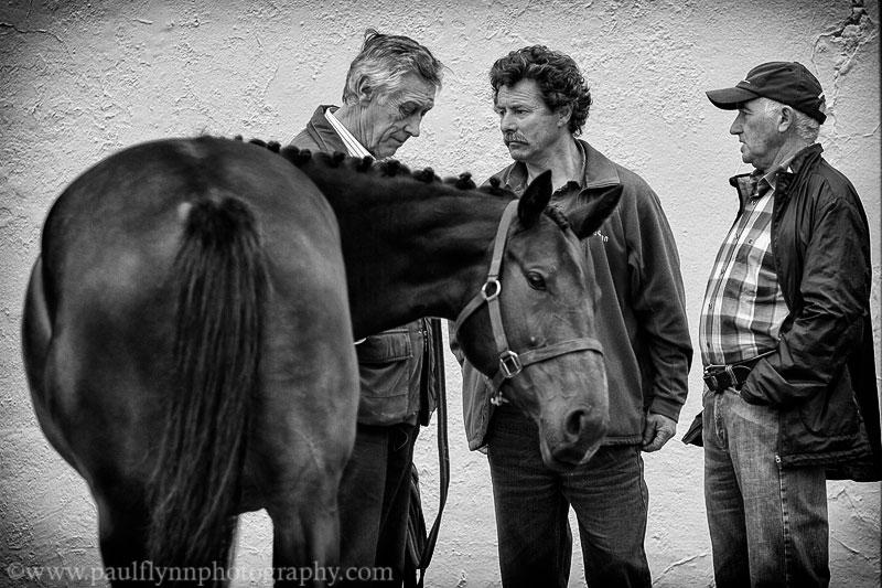 Tallow-Horse-Fair-2014 0058a