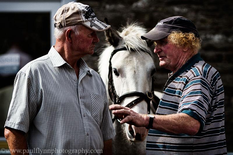 Tallow-Horse-Fair-2014 0317