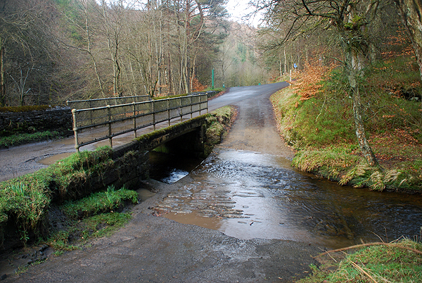 Hamsterley Forest Ford 1