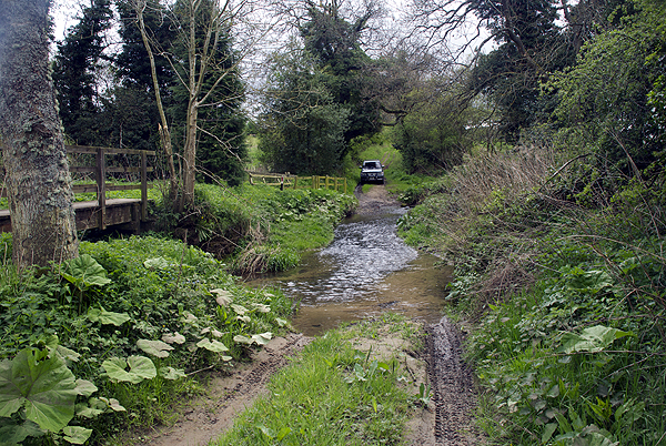 Whittingham Ford 1