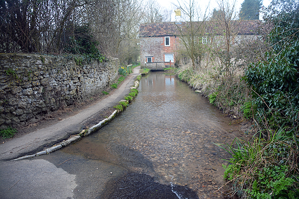 Bruton Ford 1