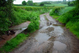 Stowey Brook Ford