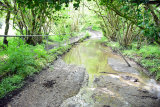 Englishcombe Ford