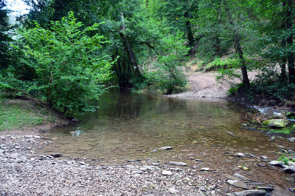 River Haddeo Ford 1