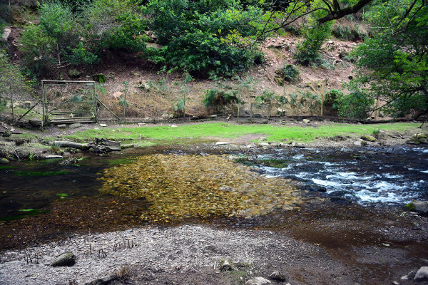 River Haddeo Ford 3