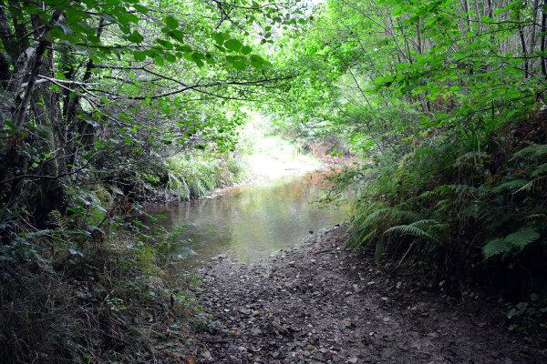 River Quarne Ford