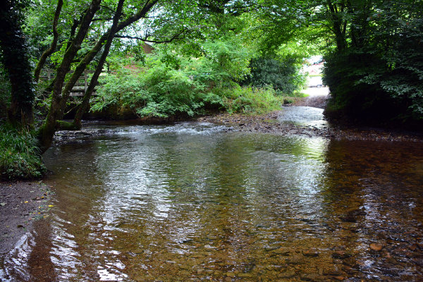 Exford Ford 2