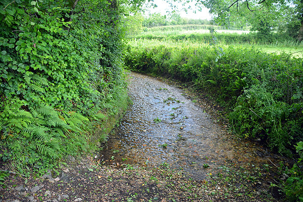 Coombses Ford