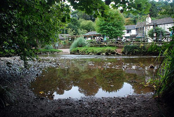 Bow Creek, Tuckenhay