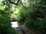 Ford at Tugby Wood