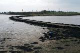 Northey Island Tidal Crossing