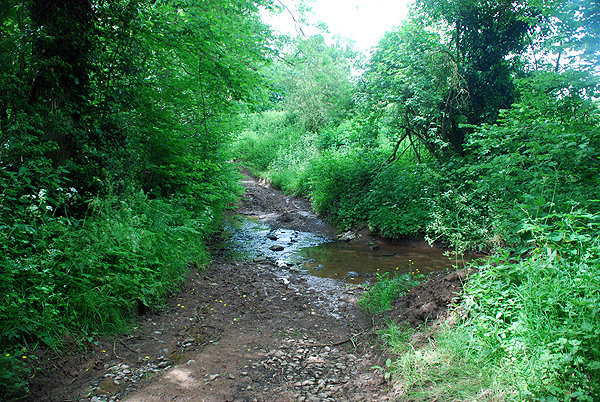 Lower Faintree Ford
