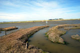 Potton Island Tidal Causeway