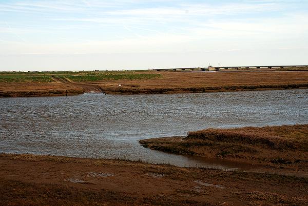 Rushley Island Tidal Crossing