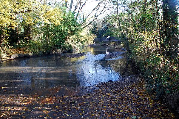 Yardley Wood 1