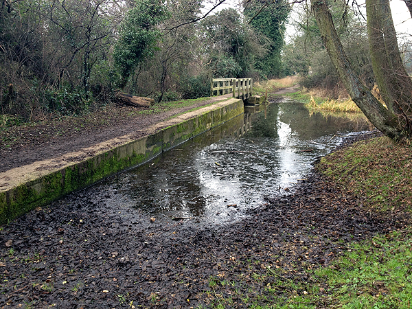 Ford at West Acre 3