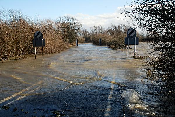 Welney Wash Road