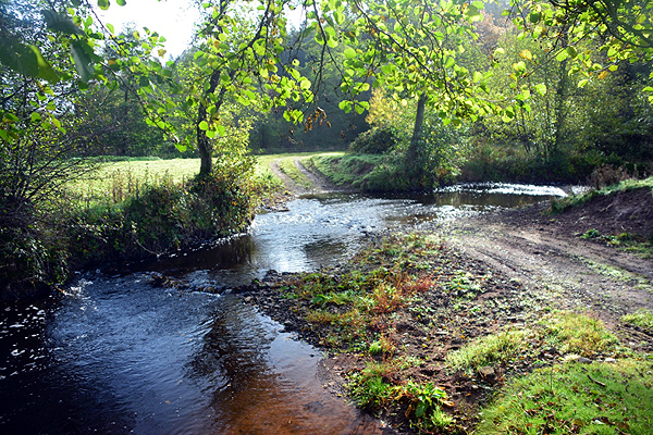 Plowden Woods Ford