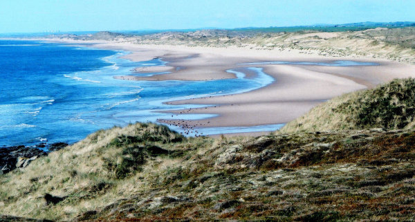 Sands of Forvie