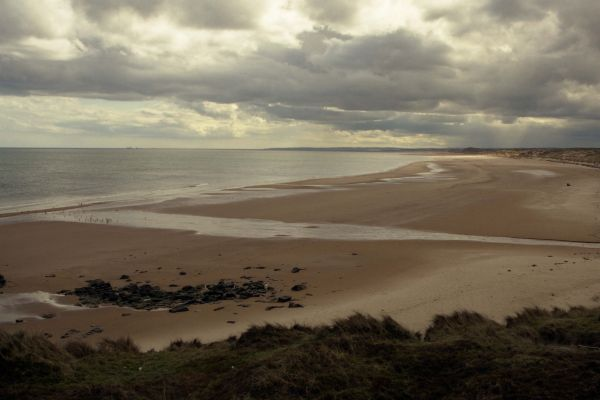 Forvie Sands from Rockend