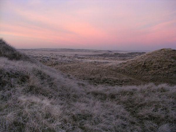 Frosty morning - Forvie Moor