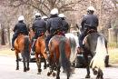 Mounted Police Toronto Canada