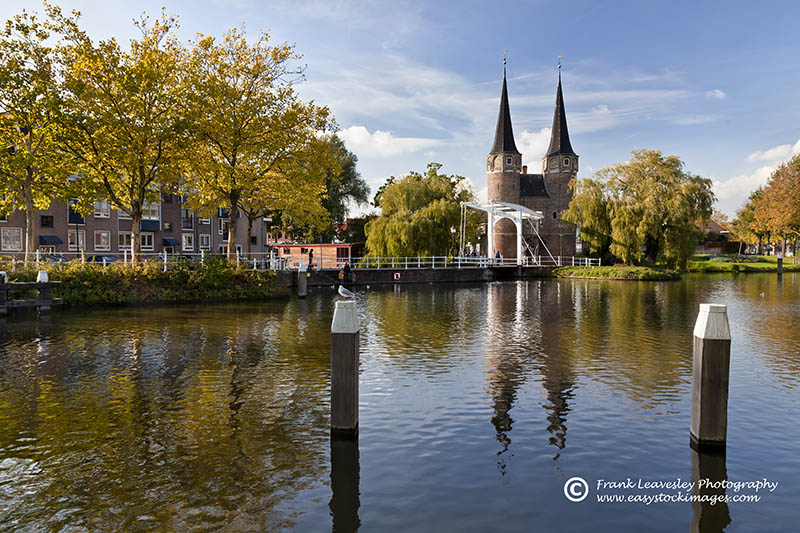 Autumn Delft
