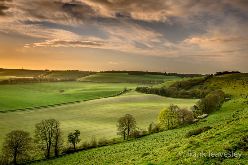 Dawn On The Downs