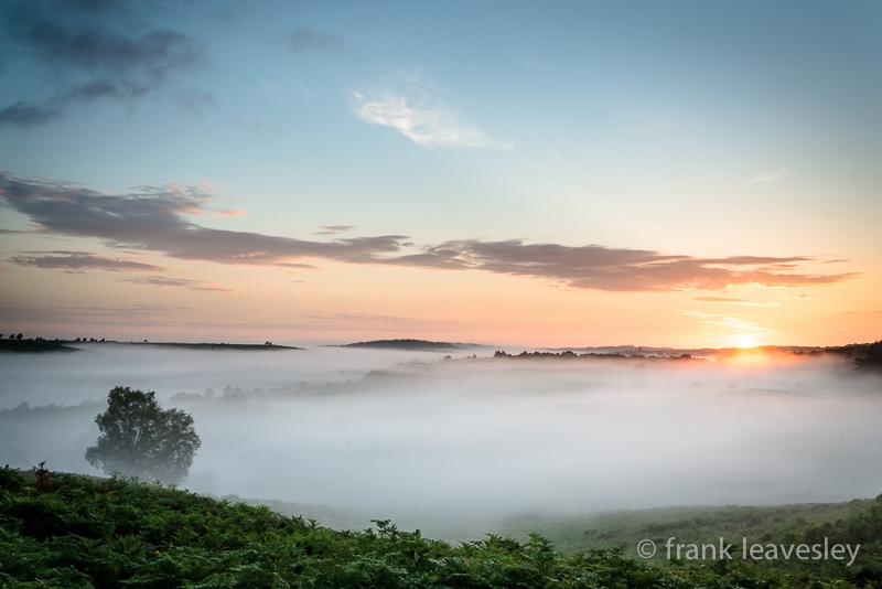 June Mist