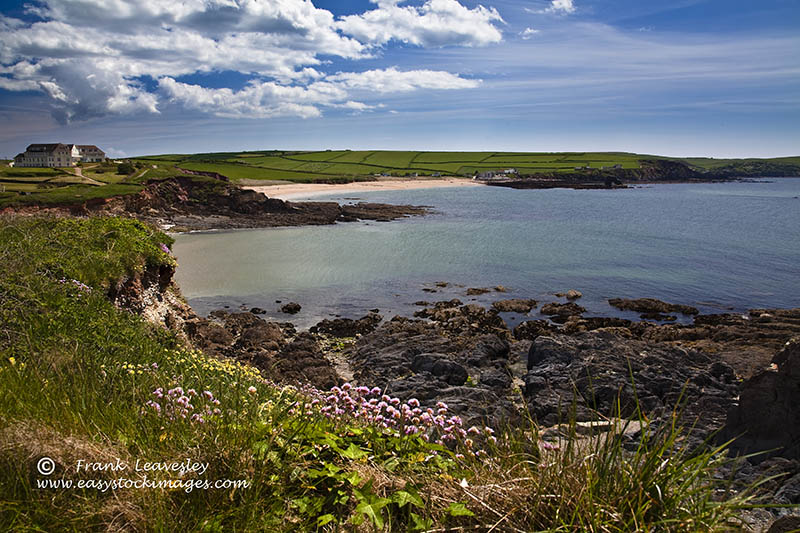 Thurleston Cliff Walk