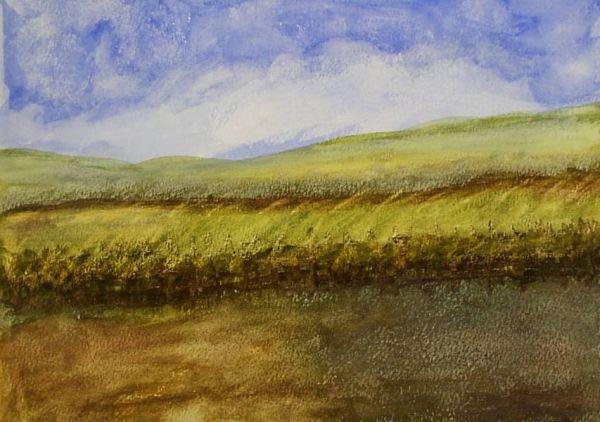 Breezy Landscape